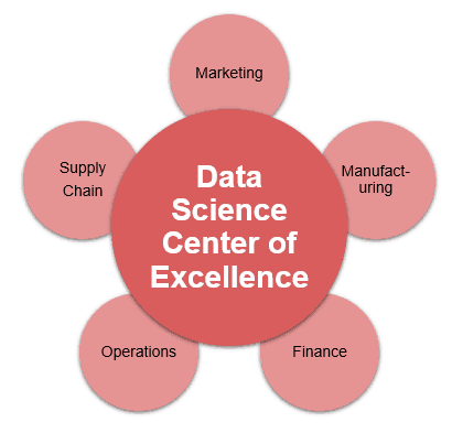 Centralized Data Science Team Structure