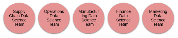 Decentralized Data Science Team Structure